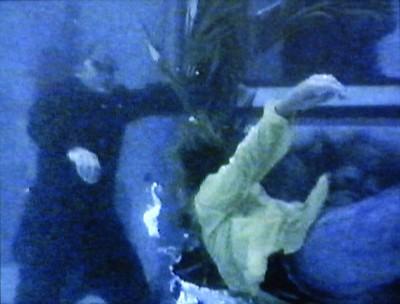 Mathieu Kleyebe Abonnenc, D'ici, 2003-2006, trilogie vidéo (Le Passage du milieu, 9 min 40 sec, 2006 · Cayenne, 10 min, 2005 · Le Bord du monde, 11 min, 2003). Collection Frac Languedoc-Roussillon
